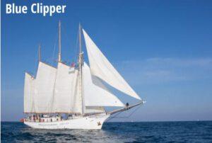 14. Blue Clipper